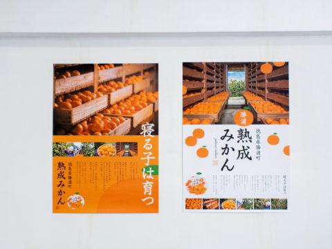 徳島県の小さな町から。みかんが語りだすポスター